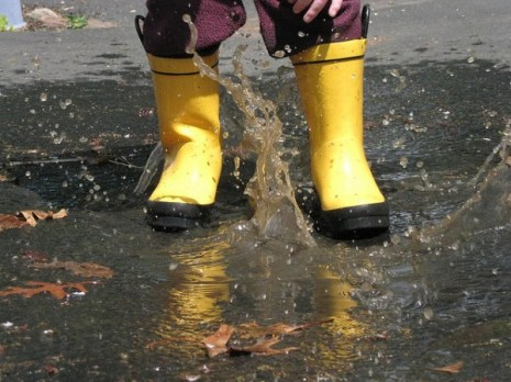 puddle-jumping-PittCaleb-flickr